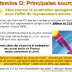 Comment Prendre La Vitamine D