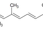 Carence Vitamine K